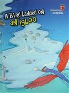 A Bird Landed on an Igloo - Leadership