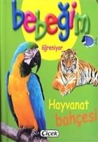 Bebeğim Öğreniyor - Hayvanat Bahçesi
