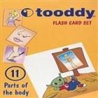 Flash Card Set: 11 (Parts of The Body / Vücudun Bölümleri)