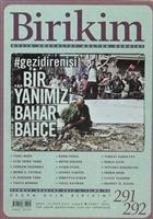 Birikim Aylık Sosyalist Kültür Dergisi Sayı: 291 - 292