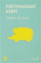 Fırtınadaki Kirpi