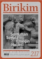 Birikim Aylık Sosyalist Kültür Dergisi Sayı: 217
