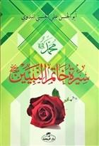 Siretü Hatemi'n Nebiyyin (Son Peygamber Arapça) 2 Renk B.Boy