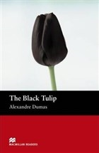 The Black Tulip Stage 2