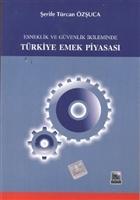 Esneklik ve Güvenlik İkileminde Türkiye Emek Piyasası