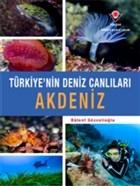 Akdeniz - Türkiye'nin Deniz Canlıları