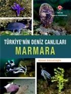 Marmara - Türkiye'nin Deniz Canlıları
