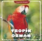 Tropik Orman - Hayvanlar Dünyası