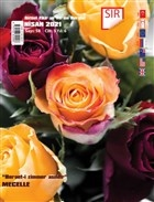 Sır Aktüel Fikir ve Yorum Dergisi Sayı: 58 Nisan 2021