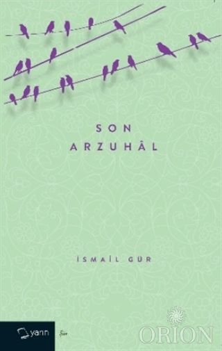 Son Arzuhal