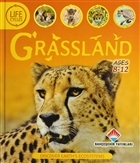 Life Cycles - Grassland