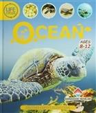 Life Cycles - Ocean