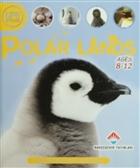 Life Cycles - Polar Lands
