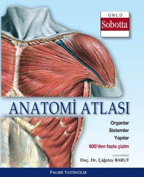 Anatomi Atlası - Sobotta Çizimleri