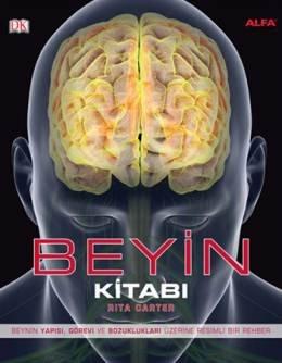 Beyin - Beynin Yapısı, Görevi ve Bozuklukları Üzerine Resimli Bir Rehber